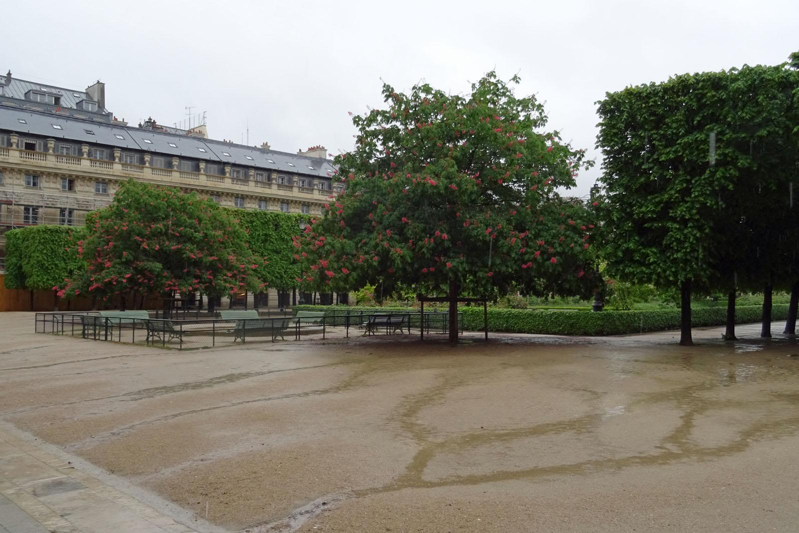 12 Auch in den Tuileries nur Regen