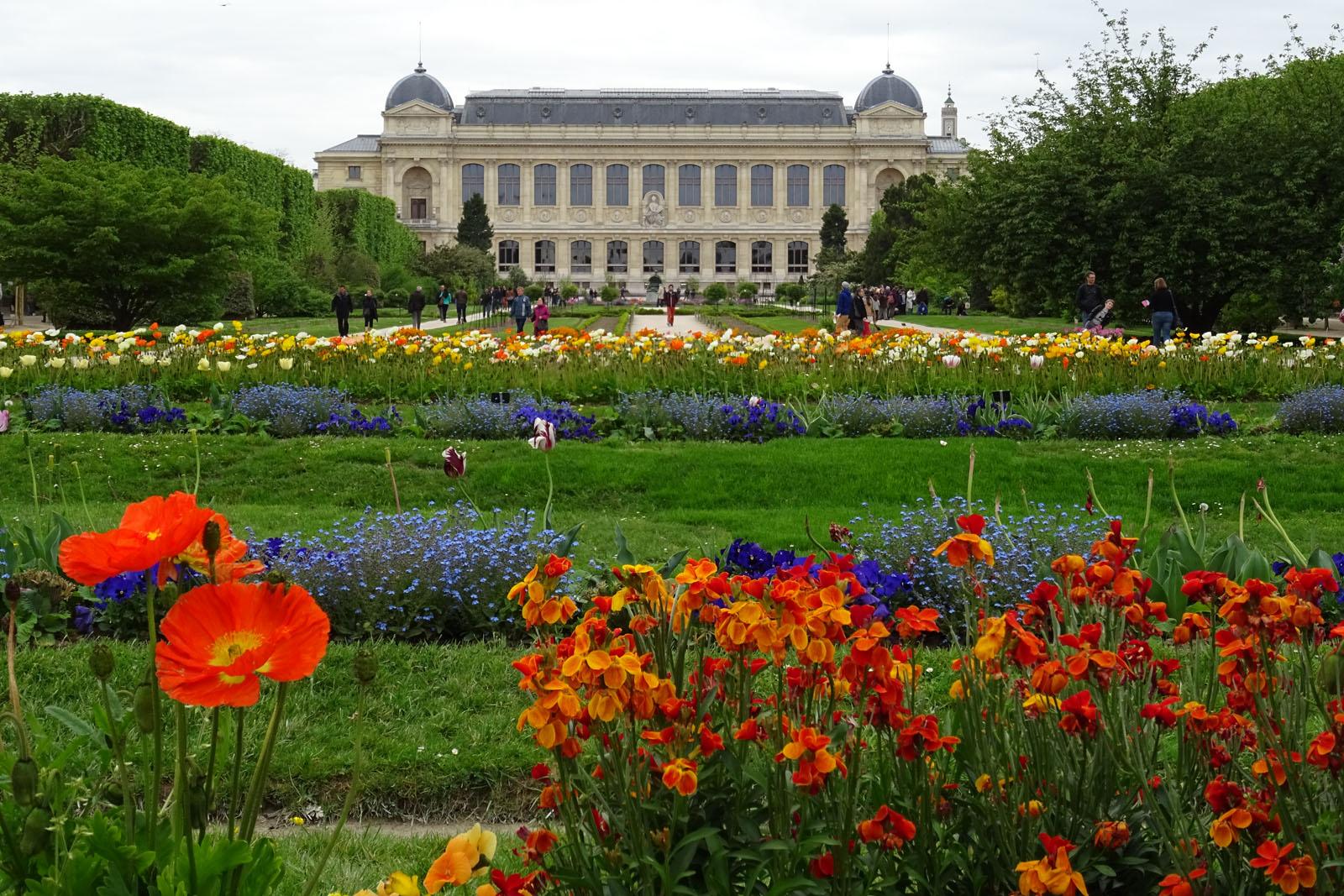 87 Jardin des Plantes